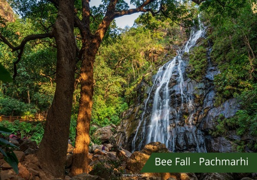 Jungle trek pachmarhi